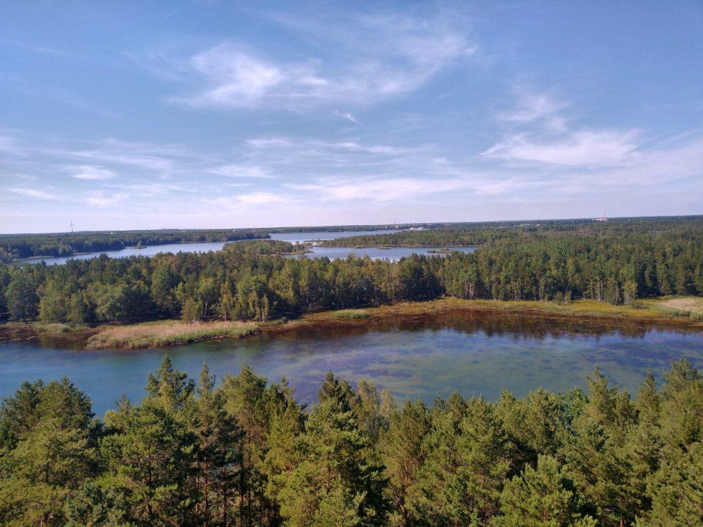Blick vom Aussichtsturm auf den Senftenberger See